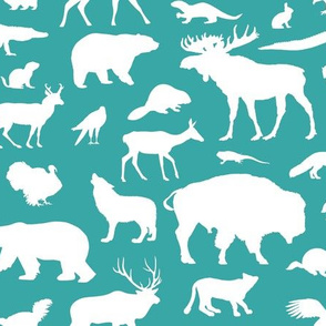 North American Animals on Teal