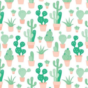 Cactus garden and succulent cacti plants for summer cool scandinavian style gender neutral green