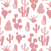 Cactus garden and succulent cacti plants for summer cool scandinavian style gender neutral pink