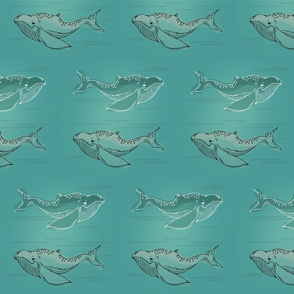 Whales_detailed