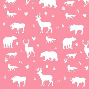 woodland animals // coral
