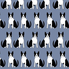 boston terrier dog dogs bostons cute boston terrier fabric pet dog pets