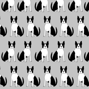 boston terrier dogs pet pets dog boston owners fabric