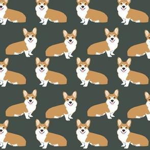 corgi corgis dog pet puppy dogs olive green cute corgis dogs