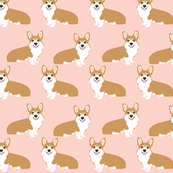 corgi corgis girls sweet pink pastel dogs dog pet pet fabric sweet corgi design