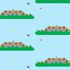 Caterpillars on Rocks with Butterflies