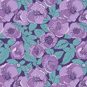 Camelia Purple garden,
