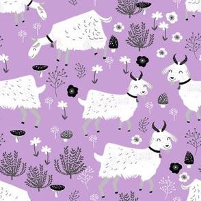 goats // pastel purple farm farm animal cute animal pastel purple spring easter lavender