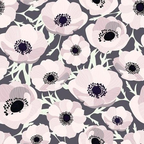 Anemone Blush