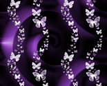Rrainbow_butterflies.1p_thumb