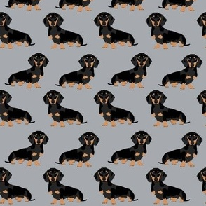 doxie dachshund wiener dog pet dog pets grey sweet dogs pillow