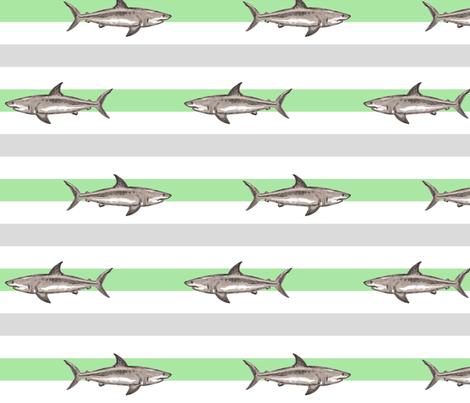 Fresh summer sharks green grey
