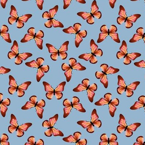 Orange and Pink Butterfly Blue Background
