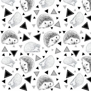 Hedgehogs with triangles