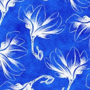 Hatched Magnolias - Blueprint