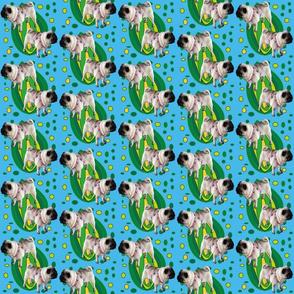 Pug_in_Fantasyland