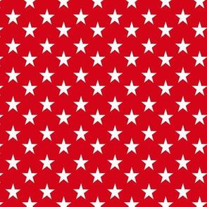 Yorkie Spirite Stars - Matching