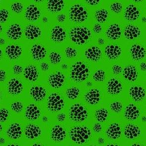 Raspberry Spots Green
