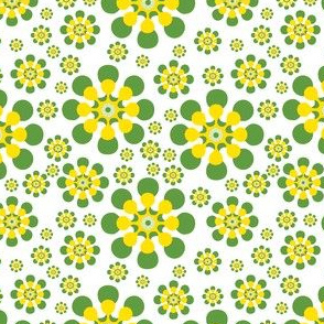 Green and yellow daisy