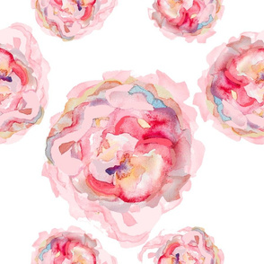 Watercolor Rose Melody Celebration
