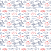 Drawn fishes red and blue