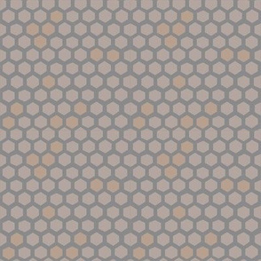 Hex spots honeycomb in cloud + cafe + sepia