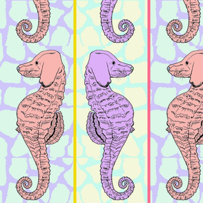 Madison_Seahorse_3_Saturation