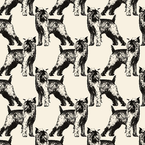 Posing Brussels Griffon - sepia