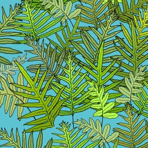 Laua'e Ferns on Turquoise