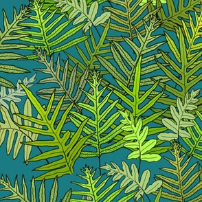 Laua'e Ferns on Teal