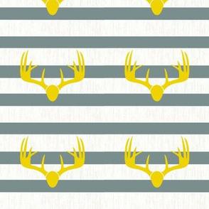 mustard deer antlers