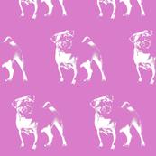 """Pug on Pink - Large (3"""")"""
