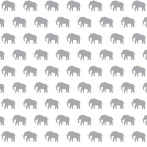 Grey Elephants on White