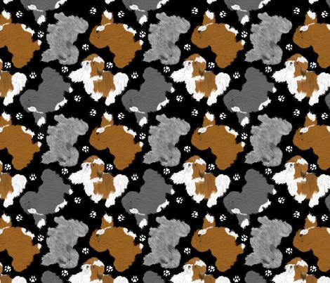 Trotting Havanese and paw prints B - black