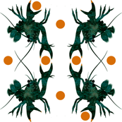 Small_Crayfish_Orange_dots