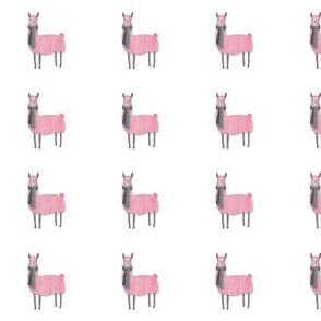 Pink_Llamas