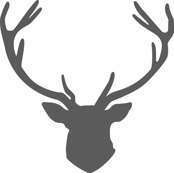 Grey Stag Head