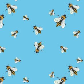bumblebee_repeat_square