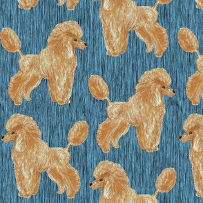 Custom Apricot Poodle with blue