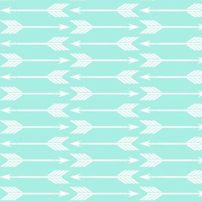 Arrows (misty teal) // glacier woods