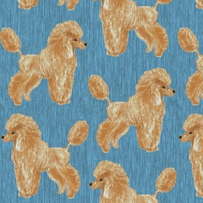 Custom Apricot Poodle with Blue 2