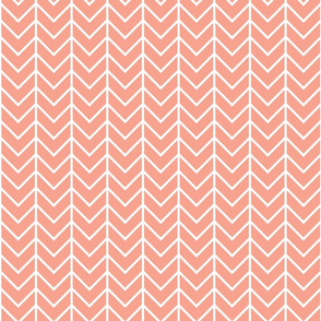Coral Sprigs and Blooms Coordinate Chevron 2