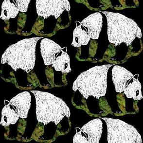 Scratchboard Pandas 2