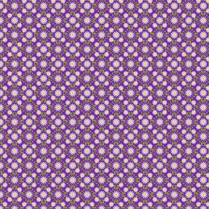 Daisy Square- purple-medium