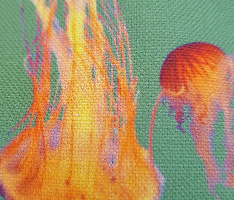 SFdd8photo- Jellyfish Summer
