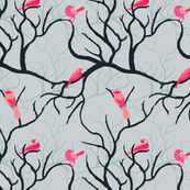 Birds_Grey