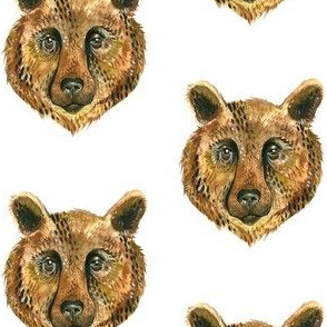 Bear Face - Small