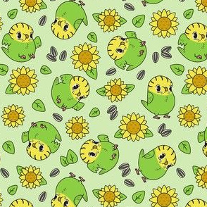 sunflower budgies