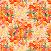 firey lilies