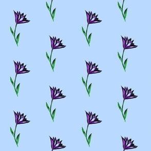 Dainty Nodding Blooms